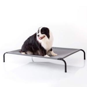 Petsure Outdoor Elevated Dog Bed