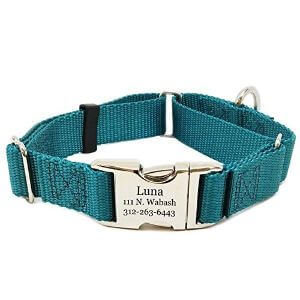 Rita Bean Engraved Buckle Personalized Martingale Dog Collar