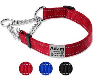 Taglory Personalized Martingale Dog Collar