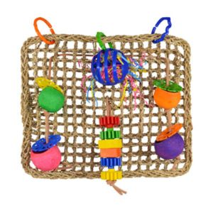 Super Bird SB746 Seagrass Foraging Wall Bird Toy