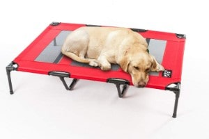 2PET Elevated Pet Bed