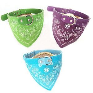 GigaMax Adjustable Pet Collar