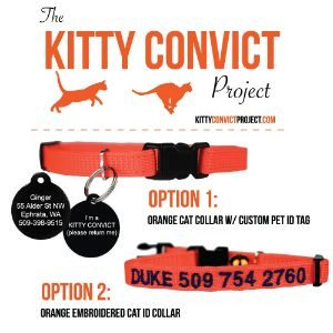 Kitty Convict Personalized Cat ID Collar