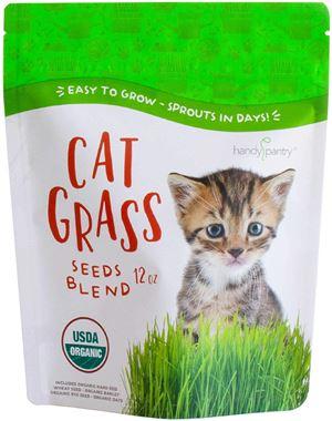 Handy Pantry Organic Cat Grass Seed Blend