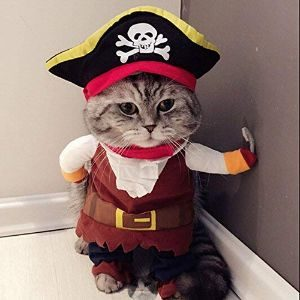 Idepet Pirate Costume