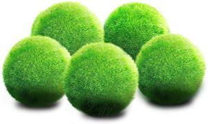 Luffy Nano Moss Balls