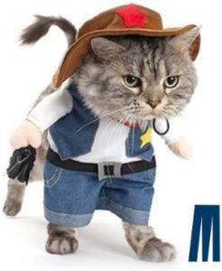 Mikayoo Cowboy Uniform
