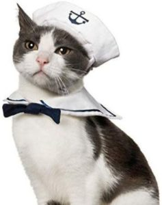 Namsan Sailor Costume