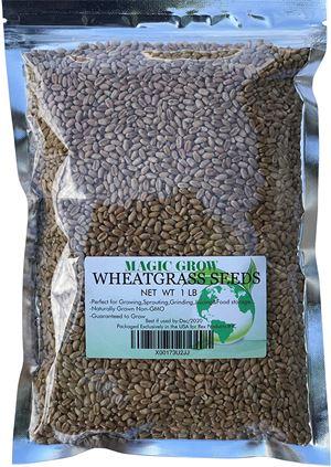 Rex Products Magic Grow Wheatgrass