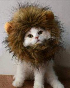 RoseyLife Lion Mane Wig