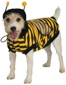 Bumble Bee Costume by Rubie's