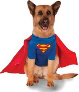 Rubies DC Comics Superman Shirt and Cape