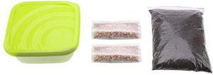 Sheens Cat Grass Seeds Kit