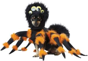 Spider PUP Costume by California Costume Collection