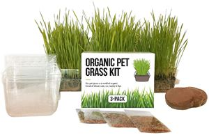 The Cat Ladies Cat Grass Growing Kit