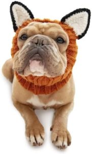 Fox Dog Costume by Zoo Snoods