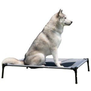 YEP HHO Elevated Pet Bed
