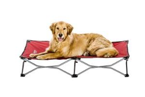 Carlson Pet Products Elevated Pet Bed