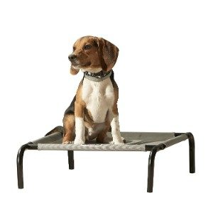 Franklin Pet Elevated Pet Bed