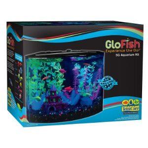 GloFish Aquarium Kit