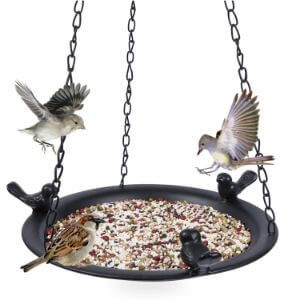 Kimdio Bird Feeder and Bird Bath