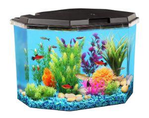 Koller Products 6.5-Gallon Aquarium Kit