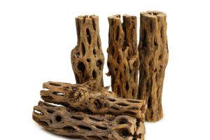 NilocG Aquatics Cholla Wood
