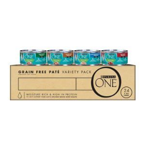 Purina ONE Natural Adult Wet Cat Food