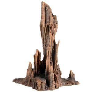 Underwater Treasures Petrified Wood