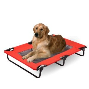 Wonline Elevated Dog Bed