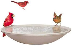 EZ Tilt-To-Clean Heated Bird Bath-min