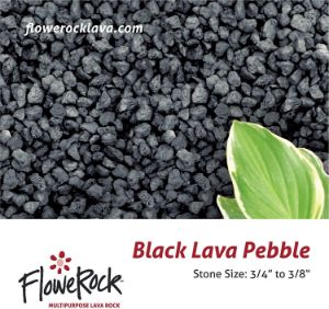 FloweRock Black Lava Pebbles
