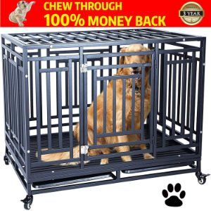 Haige Pet Your Pet Nanny Heavy Duty Dog Crate