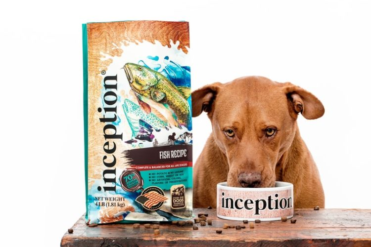 Inception Dog Food Review