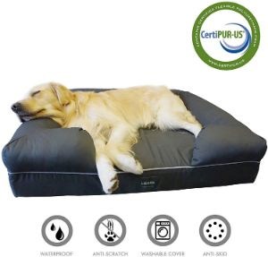 "LOAOL 4"" Durable Waterproof Memory Foam Pet Bed"