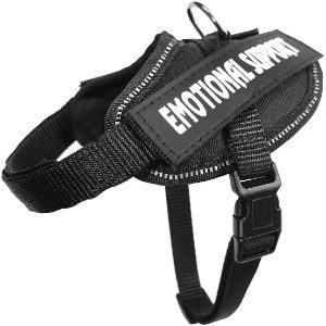 ZFRE-HJ No Pull Dog Harness