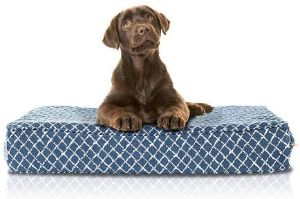 eLuxurySupply Orthopedic Memory Foam Pet Bed