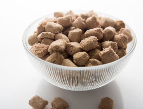 The Best Freeze Dried Dog Food