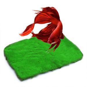 Luffy Moss