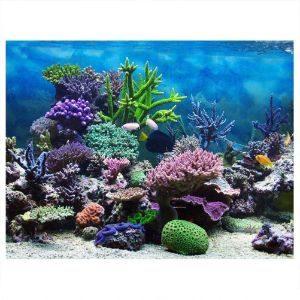 Fdit Adhesive Coral Reef Aquarium