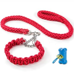 HIPIPET Highly Reflective Dog Leash and Collar Set Braided