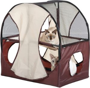 Kitty Obstacle Play Tent
