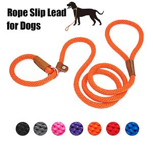 Lynxking Dog Leash Slip Rope Lead Leash