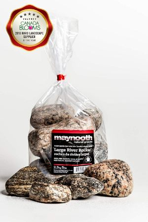 "Maynooth Natural Granite Large 3"" Granite River Rock"