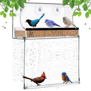 Miracliy Window Bird Feeder