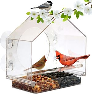 Nature Anywhere Window Bird Feeder