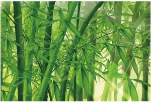 T&H Home Bamboo Fish Tank Background