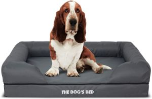 The Dog's Bed Premium Memory Foam Orthopedic Dog Bed