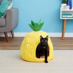 YML Pineapple Cat Tent Bed