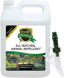 Natural Armor Animal & Rodent Repellent Spray